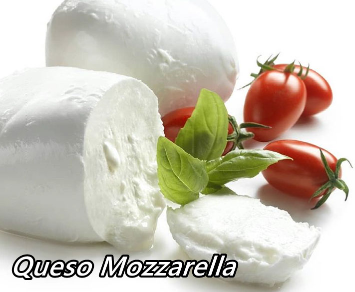 queso mozzarella recipe