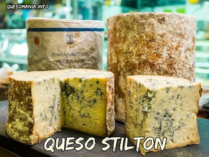 queso stilton